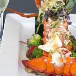 KJM - Lobster