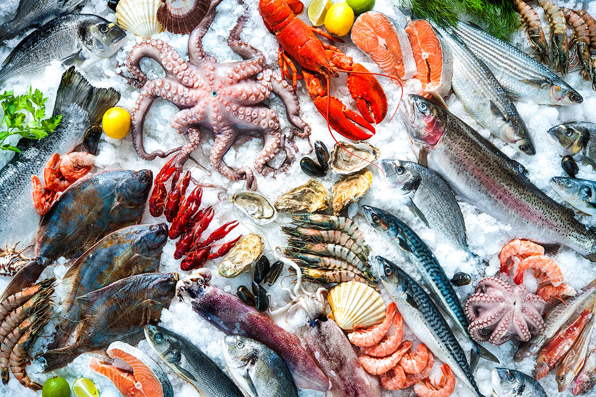 Sustainable Seafood Restaurants